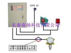长春制药厂臭氧浓度检测报警器