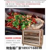 供应济南市烤鱼店用的烤箱   诸葛烤鱼电烤箱价格