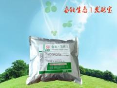 河南奋能鸡粪发酵菌种 鸡粪专用发酵剂 发酵菌液 发粪宝