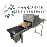湖南长沙有卖鸡蛋喷码机的吗?整托盘鸡蛋喷码机价格