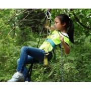 历奇探险-攀树乐园