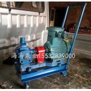 移动式齿轮泵规格齐全价格合理