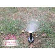雨鸟1804小型散射喷头