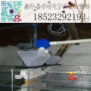 鹌鹑采食器 养殖设备 鹌鹑料槽 鹌鹑食槽
