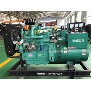 潍坊小型应急发电机 30千瓦柴油发电机组  30kw发电机组