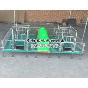 养猪设备母猪双体产床保育一体床厂家批发价格