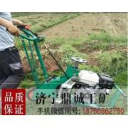 本田汽油草坪起草机草坪切块机 自走式铲草皮机 草坪移植机