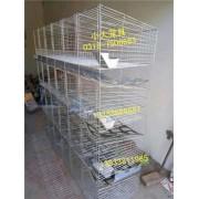 鸽子笼兔子笼鹧鸪笼鸭子笼鹌鹑笼狐狸笼鸡笼猫笼鸽笼兔笼鸟笼狗笼