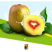 【四川水果】红心猕猴桃批发零售 无污染孕妇水果