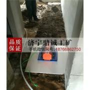江苏江阴震动大理石瓷砖平铺机 干湿两用电动铺地板砖机