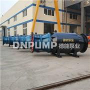 移动式轴流泵型号_轴流泵厂家