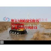 水上一辆小黄鸭-全地形水陆两栖车-动力强劲瓦尔特水陆两栖车