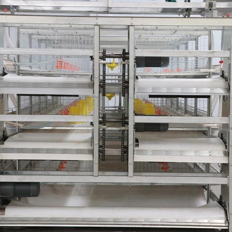 贺富养鸡设备配件厂家直销肉鸡笼养设备