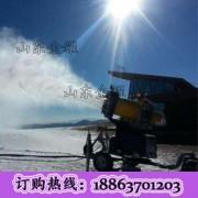 梦中的白色礼堂 雪花飘落来打雪仗 人工降雪机 全自动喷雪机