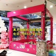 供应大型娃娃机设备道具制作租赁出售