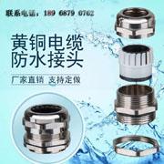 金属电缆防水接头锁紧葛兰铜镀镍防水固定M12~M100