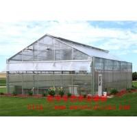 承接全国温室大棚建设 纹络温室 阳光板温室智能大棚 加工定制