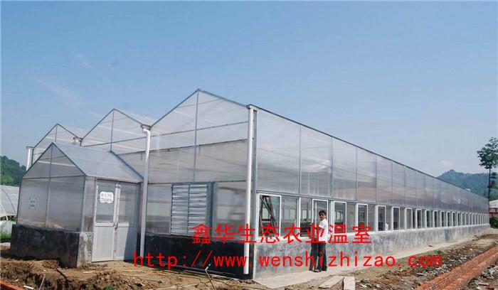 阳光板温室 蔬菜温室大棚 高品质阳光板温室建设 山东厂家定制