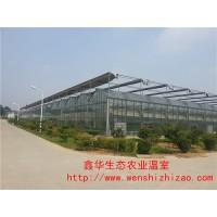 专业生产定制连栋玻璃温室 阳光板玻璃温室 可按要求定制货源足