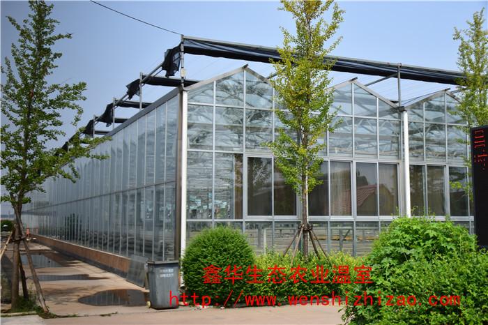 定制玻璃温室 文洛式玻璃温室 花卉蔬菜鱼鸟养殖 钢架玻璃大棚