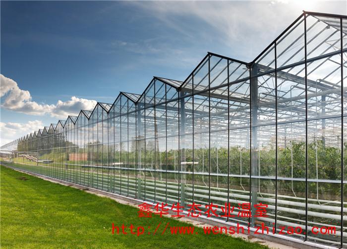 批发玻璃连栋温室 连栋pc阳光板建设 简易连栋温室大棚直销
