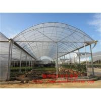 承接定制连栋温室大棚工程 蔬菜连栋玻璃温室 青州厂家免费设计