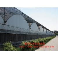 连栋薄膜温室 塑料薄膜大棚 圆拱形连栋温室厂家安装