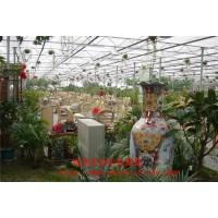 批发温室生态餐厅 生态农业温室 生态餐厅玻璃温室 厂家建设
