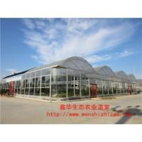 供应简易日光薄膜温室 连栋薄膜温室大棚 蔬菜薄膜温室大棚