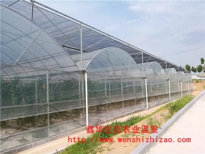 产地货源 连栋蔬菜薄膜温室 温室厂家直销 智能薄膜温室大棚