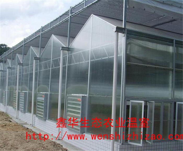 山东青州 阳光板温室 阳光玻璃景观温室 智能生态餐厅建设