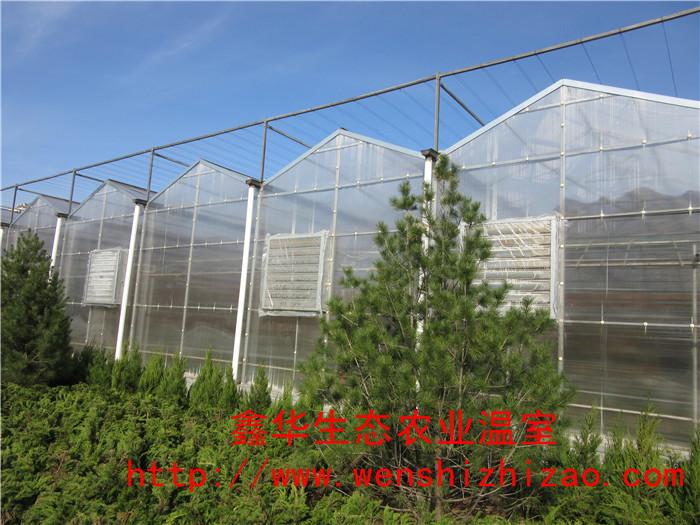 云南大理连栋阳光板温室供应价格 智能pc板温室花房厂家建设