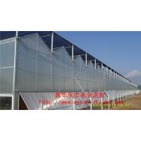 连栋阳光板温室 智能pc板温室大棚 山东温室公司专业建设