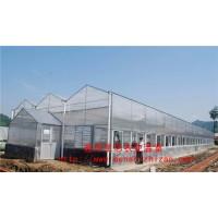 潍坊建设高质量阳光板温室大棚 一亩阳光板温室大棚造价