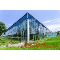 钢化玻璃温室 智能玻璃温室的优缺点 辽宁温室大棚施工方案