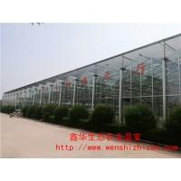 厂家直销 连栋玻璃温室 生态玻璃餐厅 自建一个玻璃温室多少钱