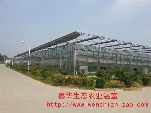 大量现货 智能玻璃温室设计安装 玻璃温室能阻挡紫外线吗