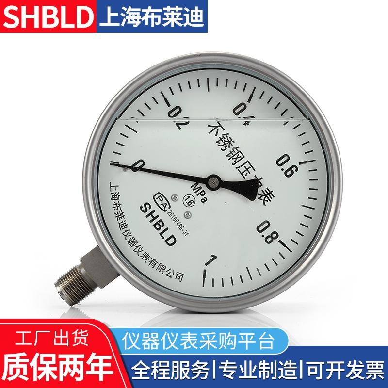 Y-60A-Z抗震压力表Y-100A-Z