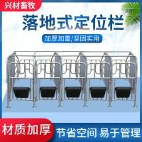 复合漏粪板定位栏复合板猪用母猪产床保育板育肥仔猪漏粪板定制