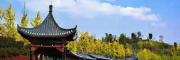 2021 中国(上海)国际园林景观设计及设施展览会